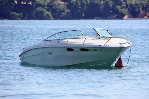 gebrauchte sea ray 230 ov sportboot zu verkaufen. Black Bedroom Furniture Sets. Home Design Ideas