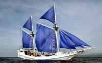 sailing680x422